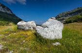 Two big rocks lying on meadow at mountains of Montenegro — Stock Photo