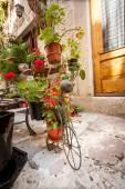 Saksı sokak için dekoratif stand — Stok fotoğraf