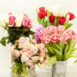 Different fresh cut flowers in vases against white background — Stock Photo #57591531