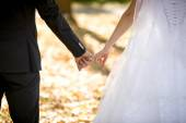 Young bride and groom holding hands at park — Stock Photo
