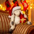 Photo of symbol of year 2015 - sheep, at decorated house — Stockfoto #57973179