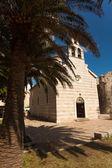 Old orthodox basilica and bid palm tree growing — Stock Photo
