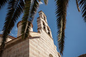 View on orthodox church through palm tree leaves — Stock Photo