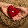 Man and woman holding knitted heart in birds nest — Stock Photo #62574045