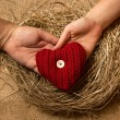 Man and woman hands holding decorative red heart in nest — Stock Photo #62574133
