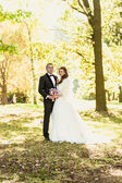Just married couple embracing at park at autumn sunny day — Stock Photo