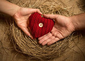 Man and woman holding knitted heart in birds nest — Stock Photo