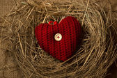 Photo of red knitted heart lying in birds nest — Stock Photo