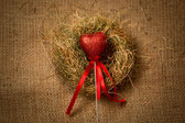 Decorative red heart on stick with ribbon in nest — Stock Photo