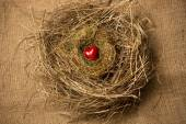 Photo of small red heart lying in birds nest  — Stock Photo