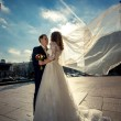 Bride with long veil hugging with groom on street at windy day — Stock Photo #62828123