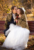 Newlyweds kissing on bench at autumn park under woolen plaid — Stock Photo