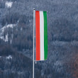 Hungarian flag on pole against fir forest covered by snow — Stock Photo #64644749