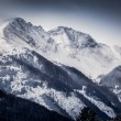 Landscape of high Alps covered by snow at morning — Stock Photo #64644803