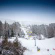 Landscape of ski lift on slope at mountain covered by pines — Stock Photo #64645427