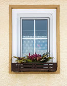 Flowers growing under window in traditional Austrian house — Stock Photo