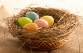 Macro shot of colorful Easter eggs lying in nest on the table — Stockfoto
