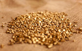 Mound of golden nuggets lying on burlap — Stock Photo