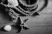 Black and white shot of old rope and seashells lying on wooden d — Stock Photo