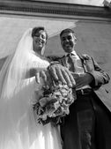 Black and white portrait of newly married couple showing rings — Foto de Stock
