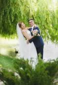 Beautiful hugging bride and groom under tree — Stock Photo