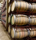 Wine — Stock Photo