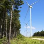 Wind turbines — Stock Photo #65861343