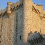 Torija Castle — Stock Photo #72318117