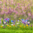 Floral meadow — Stock Photo #61868099