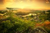 Rising above the river mist — Stock Photo