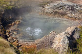 Boiling Water in a Thermal Pool — Stock Photo