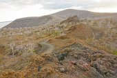Spatter Cones on a Remote Volcanic Island — Photo