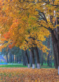 Oil painting on canvas of autumn park with yellow trees and path — Stock Photo
