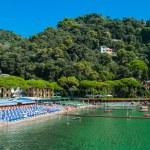 Portofino village on Ligurian coast in Italy — Stock Photo #60640159