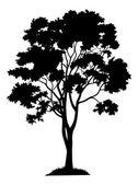 Ahornbaum und Gras, silhouette — Stockvektor