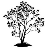 Magnolia Tree with Flowers and Grass Silhouette — Vettoriale Stock
