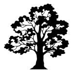 Oak Tree Pictogram, Black Silhouette and Contours — Stock Photo #73093805