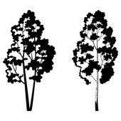 Trees, birch and symbolic silhouette — Stock Vector