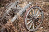 Old rural wooden wagon on a dry grass — Stock Photo
