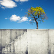White concrete wall with stairway and small tree above blue sky — Stock Photo #53689671