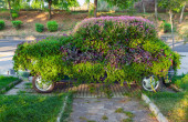 Conceptual flower decoration of small old car — Stock Photo