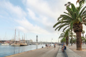 Barcelona Vista port view with coastal road, palms — Stock Photo