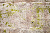 Old grungy plywood with green paint, background texture — Foto Stock