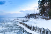 Winter coastal landscape with floating ice and frozen pier — Stock Photo