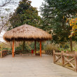 Wooden pathway and traditional Chinese gazebo — Stock Photo #63677845