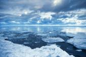 Winter coastal landscape with floating melting ice fragments — Stock Photo