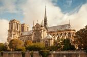 Notre Dame de Paris cathedral, vintage toned photo — Photo