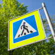 Pedestrian crossing. Road sign in summer city — Stock Photo #74730169