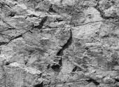 Rough gray rock wall, stone texture — Stock Photo