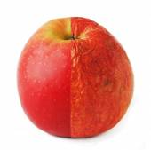 Creative apple combined from fresh and old half isolated on white. — Stock Photo